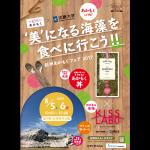 美になる海藻を食べに行こう!! | 紀州あかもく × 近畿大学