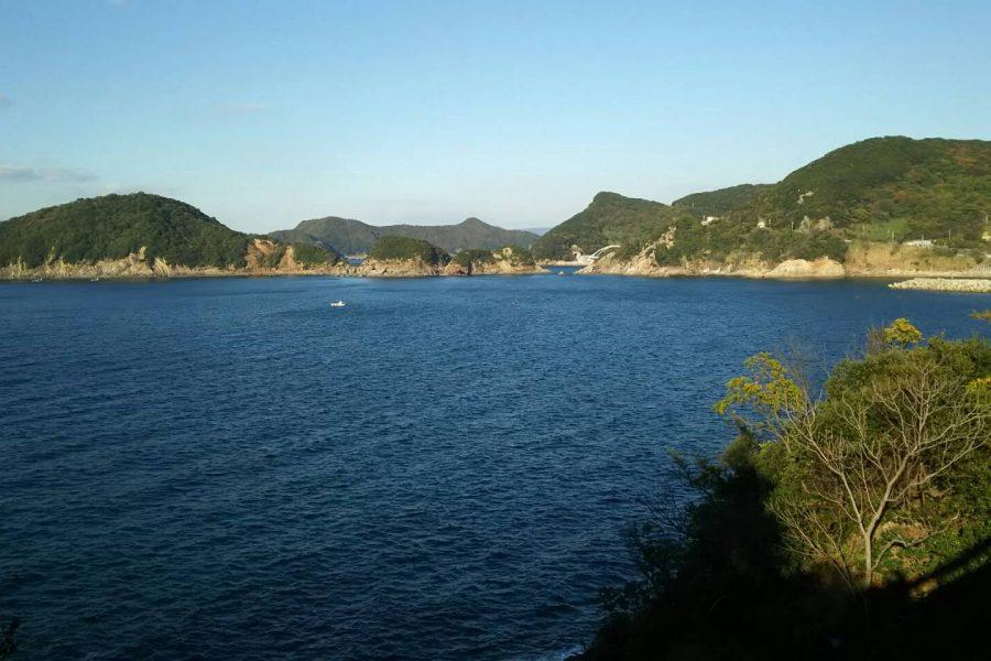 「紀州あかもく」の海をご紹介