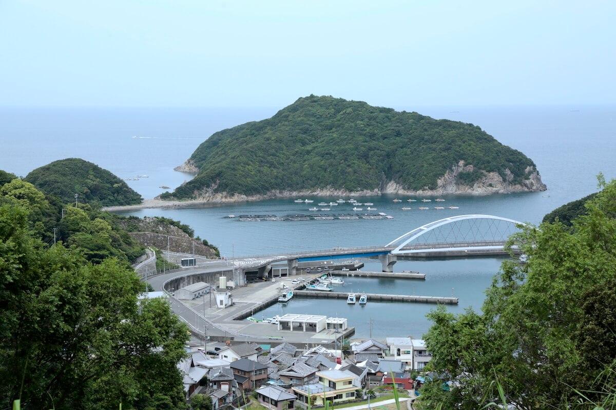 アカモク漁 風景 | 紀州 あかもく | AKAMOKU